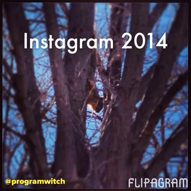 Artwork for The Lab #3: Instagram 2014. @programwitch #yearinreview.