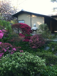 Beauty in Imperfection: A Visit to the Shofuso Tea House