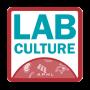 Artwork for Lab Culture Extra: Progress in Sierra Leone
