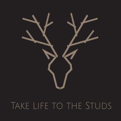 Take Life to the Studs show image