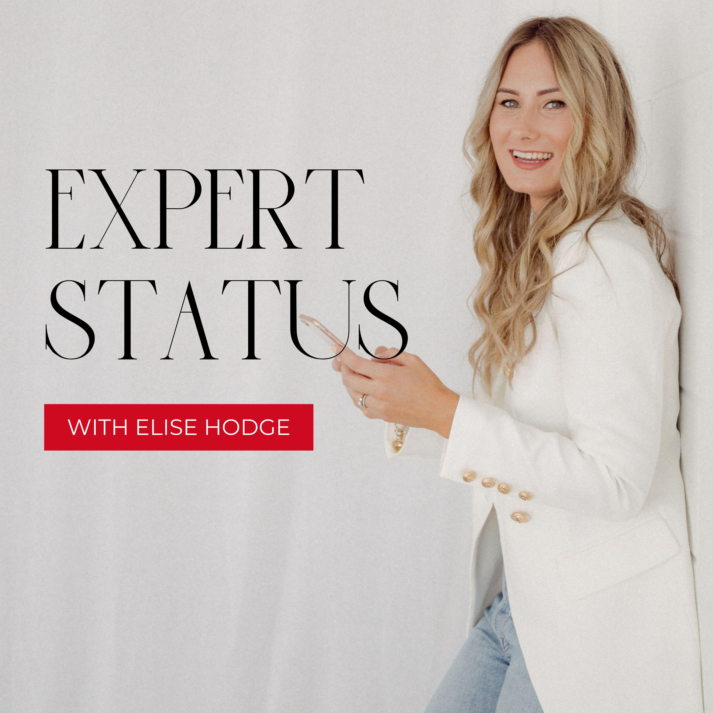 Expert Status Show show art