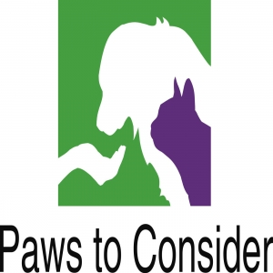 Paws to Consider