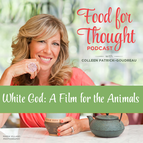 White God: A Film for the Animals
