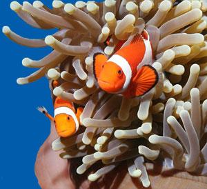 Spring Break at the new Idaho Aquarium