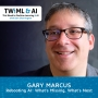 Artwork for Rebooting AI: What's Missing, What's Next with Gary Marcus - TWIML Talk #298