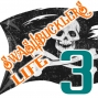 Artwork for A Swashbuckler's Life 3