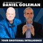 Artwork for Daniel Goleman: Your Emotional Intelligence