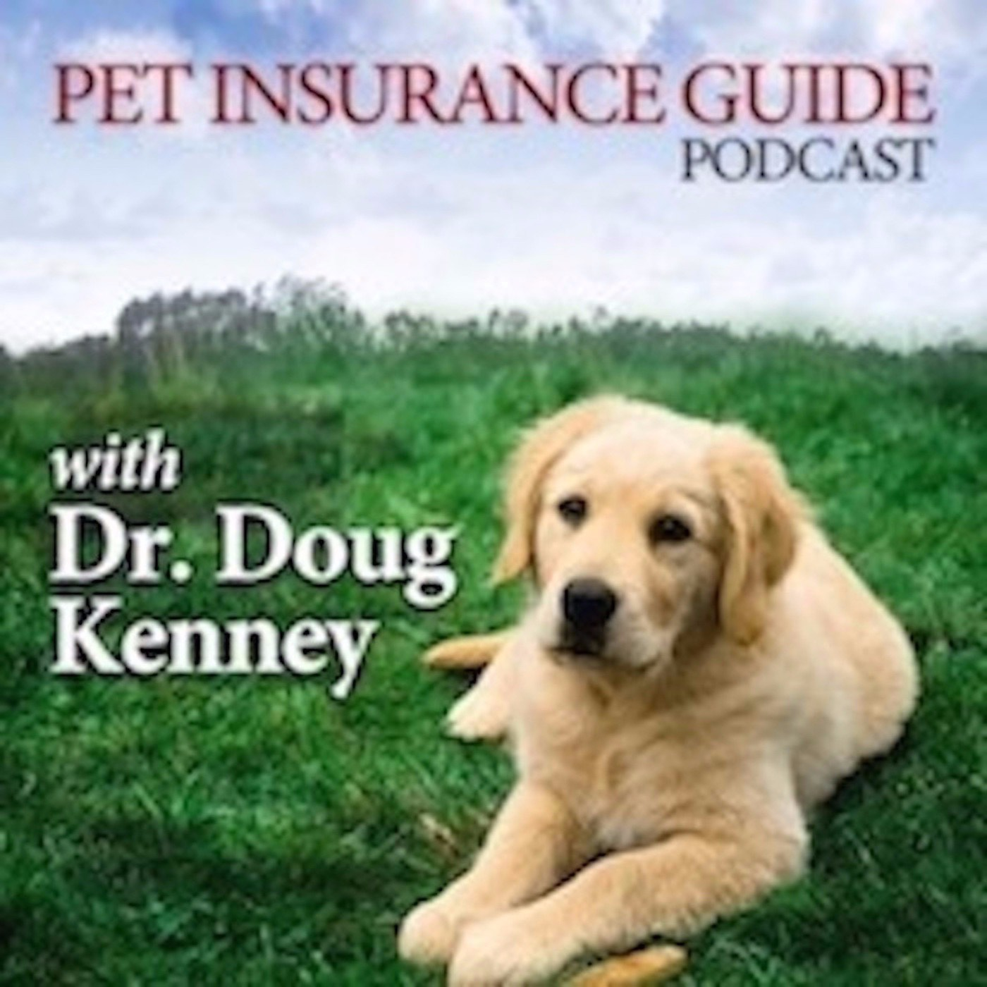 Pet Insurance Guide Podcast show art