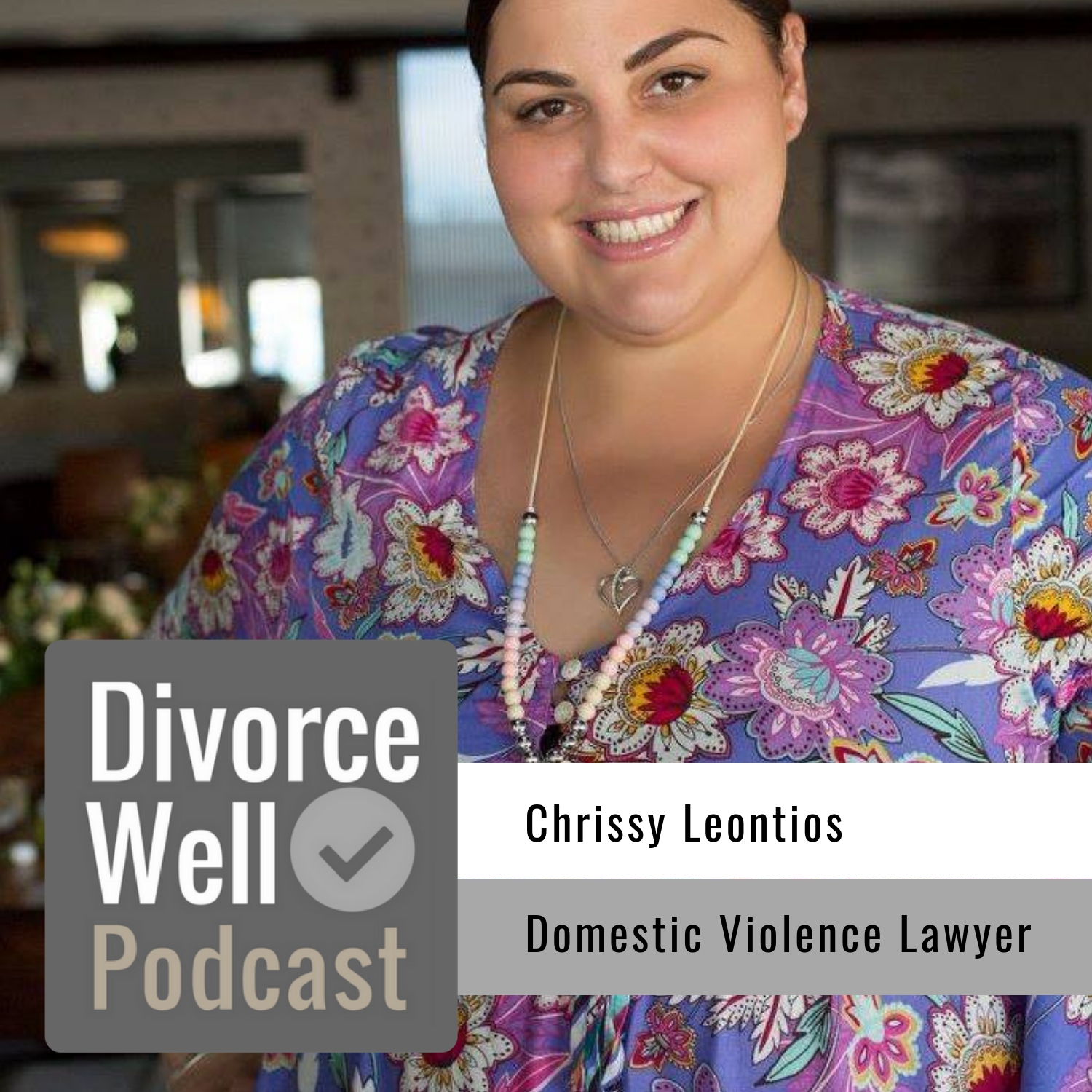 The Divorce Well Podcast - 27 - Domestic Violence Family Lawyer, Chrissy Leontios