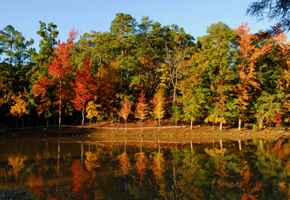 5 Best Places for Fall Foliage
