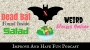 Artwork for Dead Bat Found Inside Salad-Weird Stories for the week of April 11
