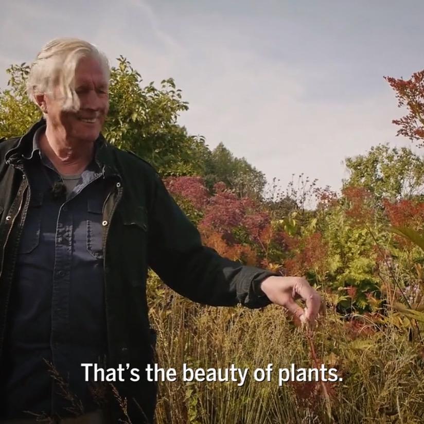 Five Seasons Total Landscaping