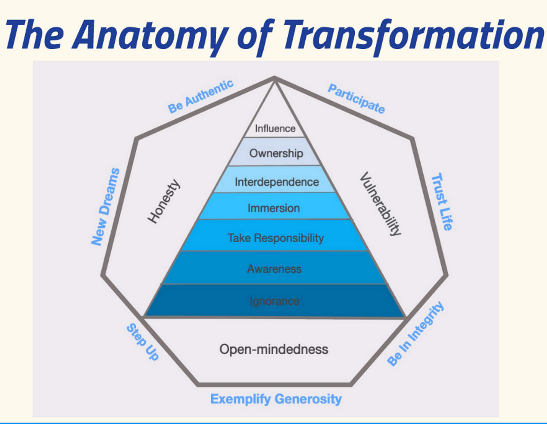 The Anatomy Of Transformation Intro Webinar