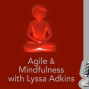 Artwork for Agile and Mindfulness with Lyssa Adkins