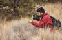 Artwork for Episode 11: Charley Eiseman, Freelance Naturalist and Bug Tracker Extraordinaire