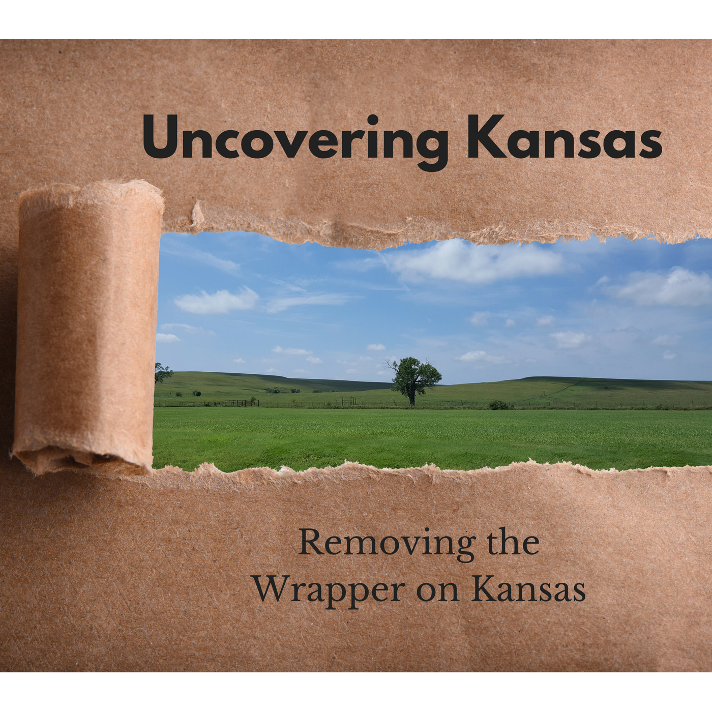 Uncovering Kansas show art