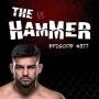 Artwork for The Hammer MMA Radio - Episode 377