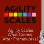 Artwork for Agility Scales w Jurgen Appelo