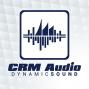 Artwork for CRM Audio episode 64: Matt Wittemann