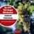 Ep 372: The Grape Miniseries -- Gruner Veltliner show art