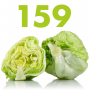 Artwork for #159 - Iceberg Lettuce