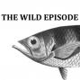 Artwork for Archerfish : Bullseye