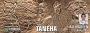 Artwork for Taneha