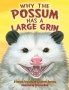 Artwork for Storytime: Why the Possum has a Large Grin by Johnette Downing