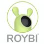 Artwork for #0016 – Artificial Intelligence Learning with Elnaz Sarraf of ROYBI