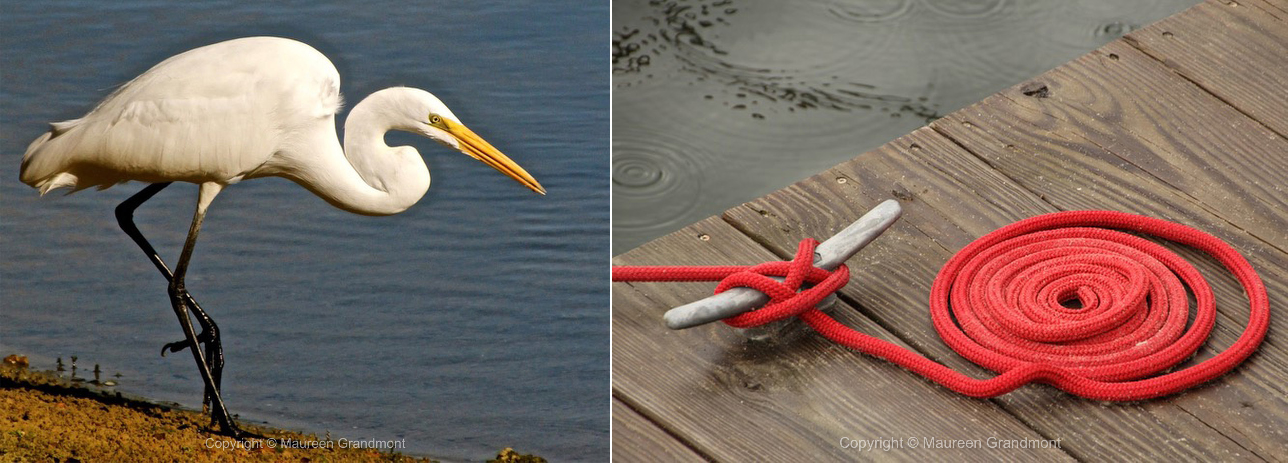 egret red rope