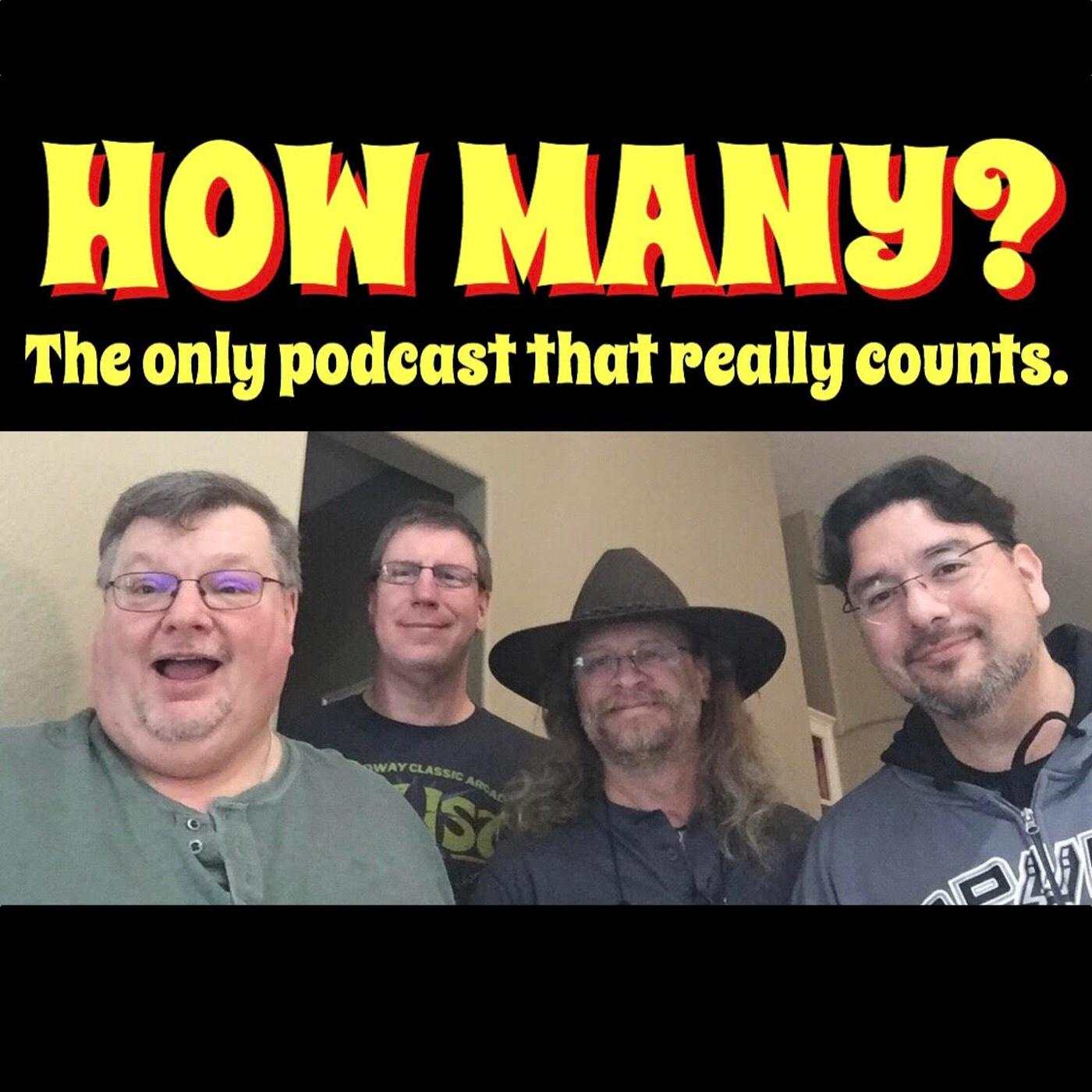 How Many Podcast  logo