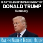 Artwork for 13 Articles of Impeachment of Donald Trump - Summary
