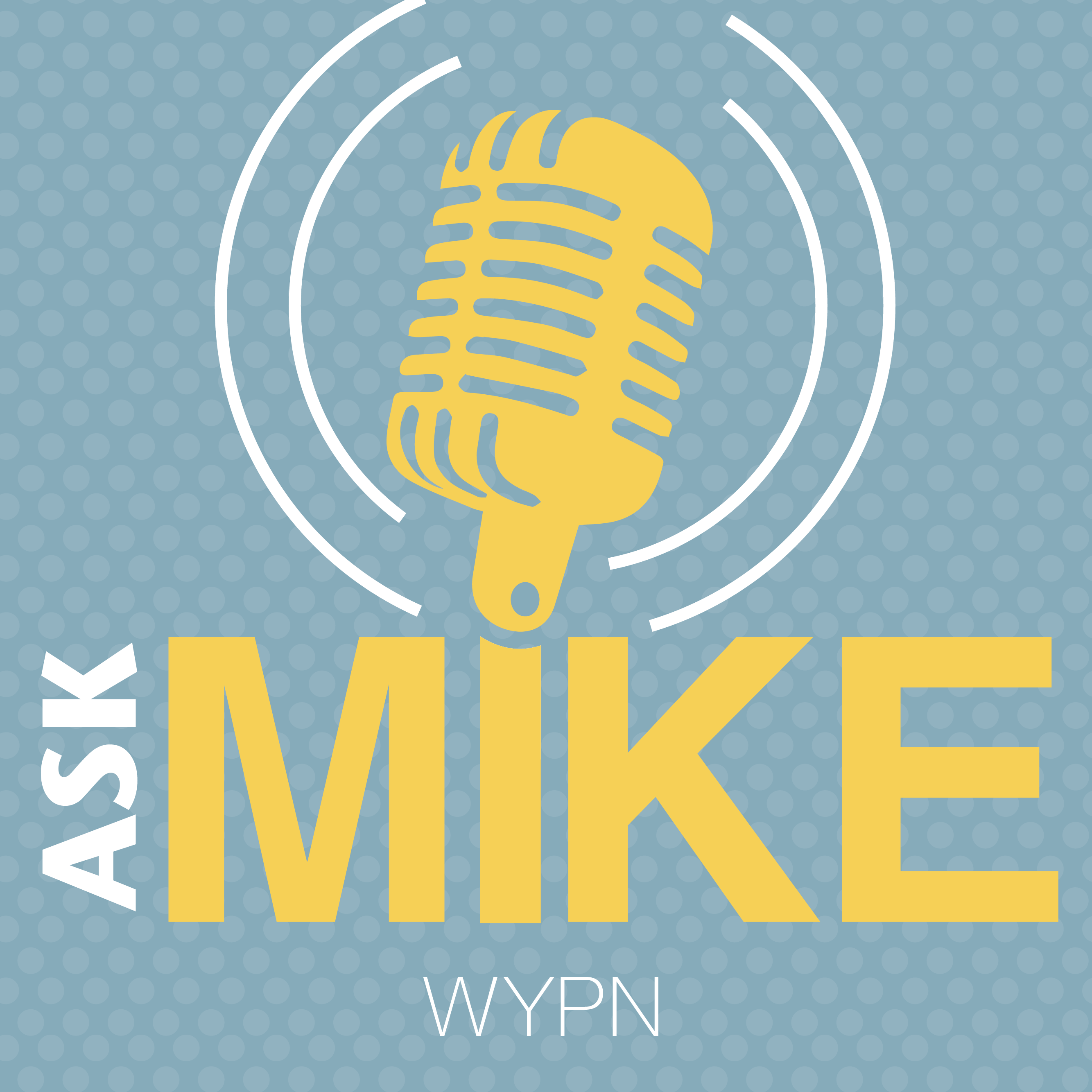 Ask Mike show art