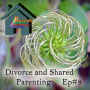 Artwork for Divorce and Shared Parenting