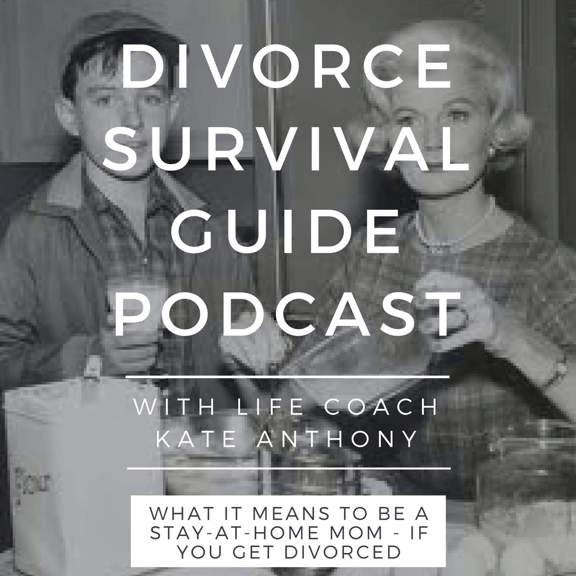 The Divorce Survival Guide Podcast - What it really means to be a stay-at-home—if you get divorced