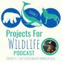 Artwork for Episode 054 - Dr. Shermin de Silva protects wild asian elephants in Sri Lanka