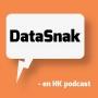 Artwork for DataSnak ep 64 - om ledelse i små it-virksomheder