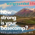 How Strong Is Your Basecamp? show art
