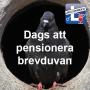 Artwork for Krönika 2 - Dags att pensionera brevduvan