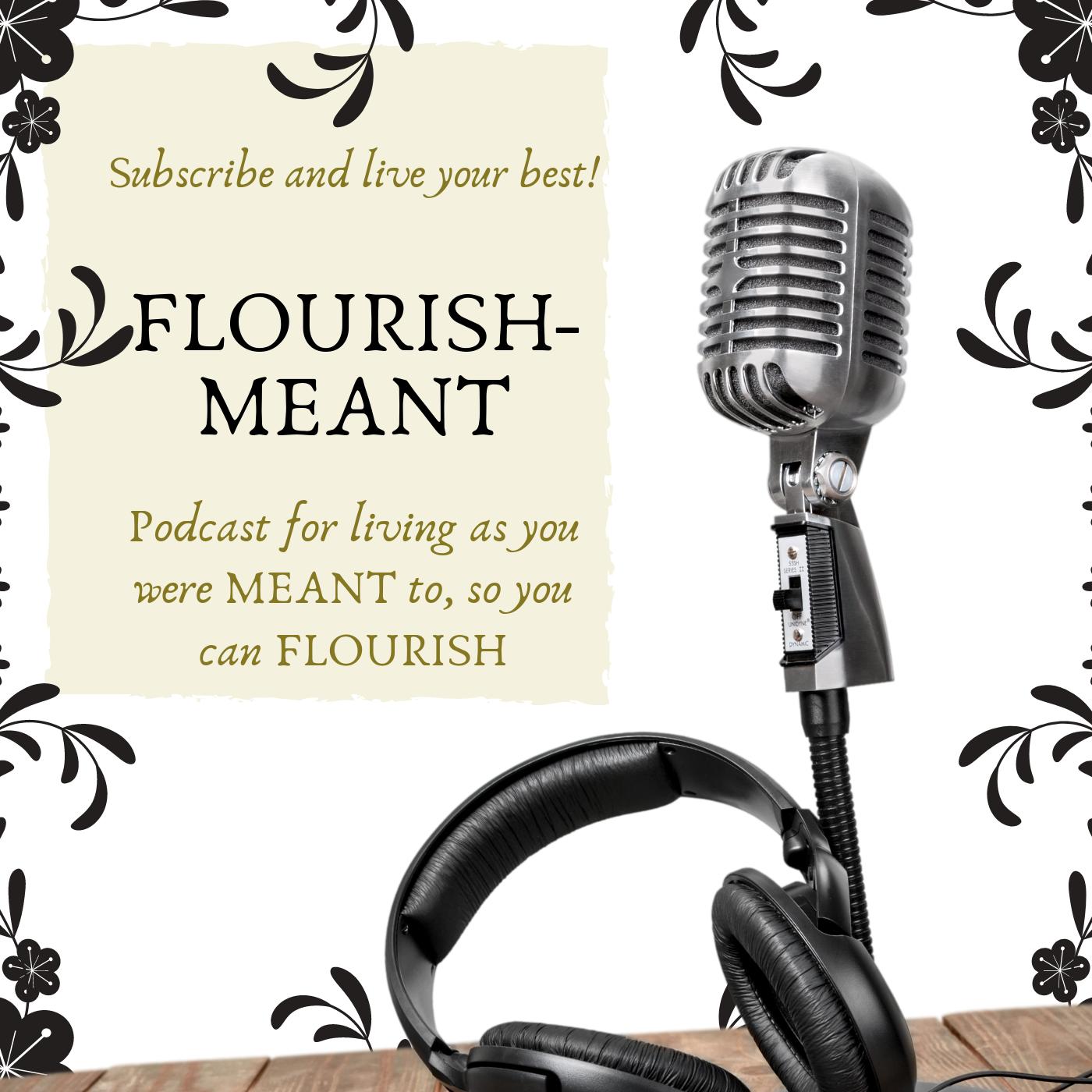 Flourish-Meant: You Were Meant to Live Abundantly show art