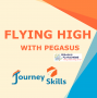Artwork for 54 Flying High With Pegasus