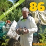 Artwork for Beekeeping in Wellington with Frank Lindsay - KM086