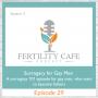 Artwork for Ep. 29 | Surrogacy for Gay Men