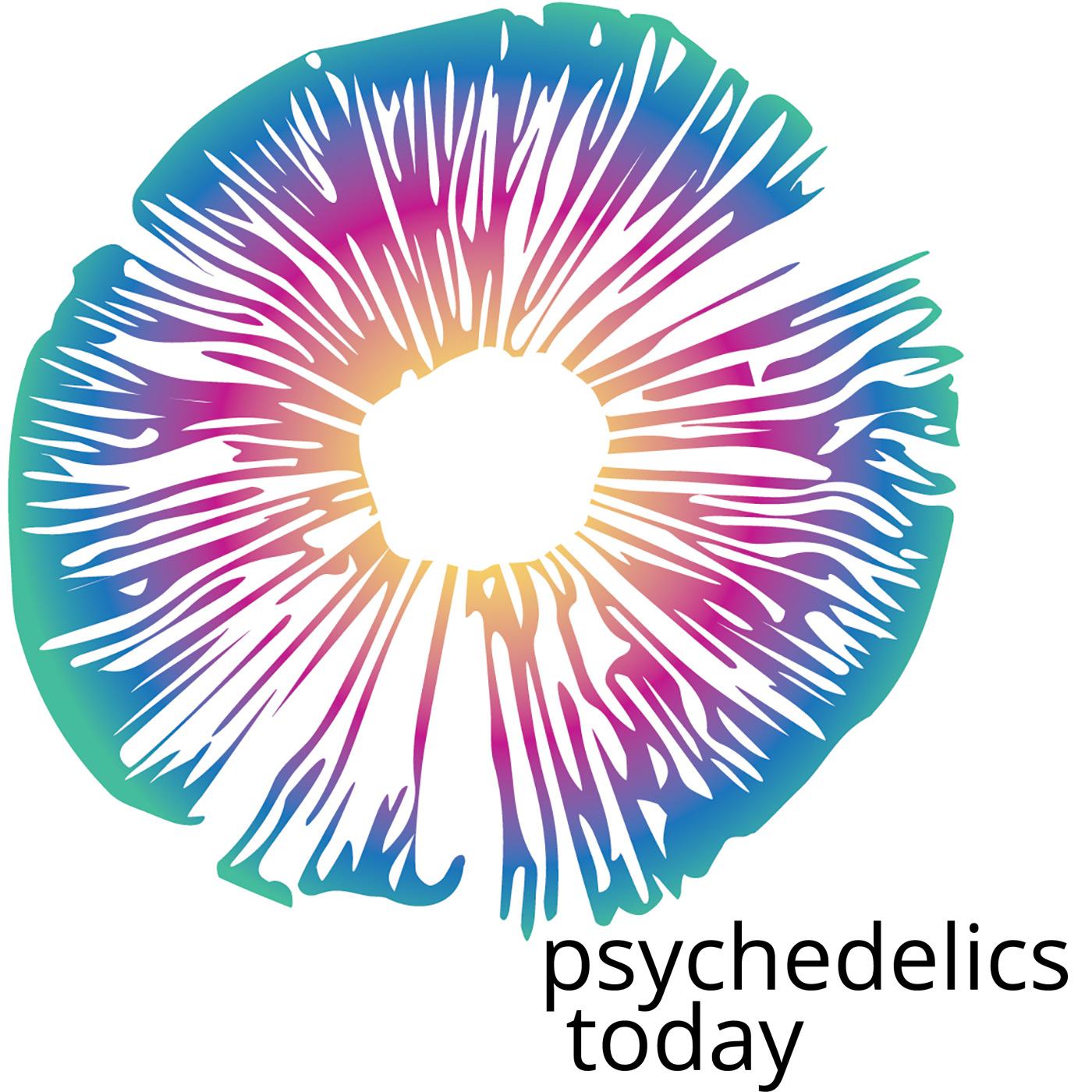 Psychedelics Today show art