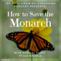 Artwork for SG589: How to Save the Monarchs with Kylee Baumle