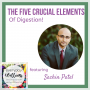 Artwork for Ep. 86 The Five Crucial Elements of Digestion - with Sachin Patel