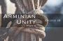 Artwork for Episode 28: Arminian Unity (Part 2)