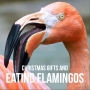 Artwork for Christmas Gifts and Eating Flamingos | SOTG 1009