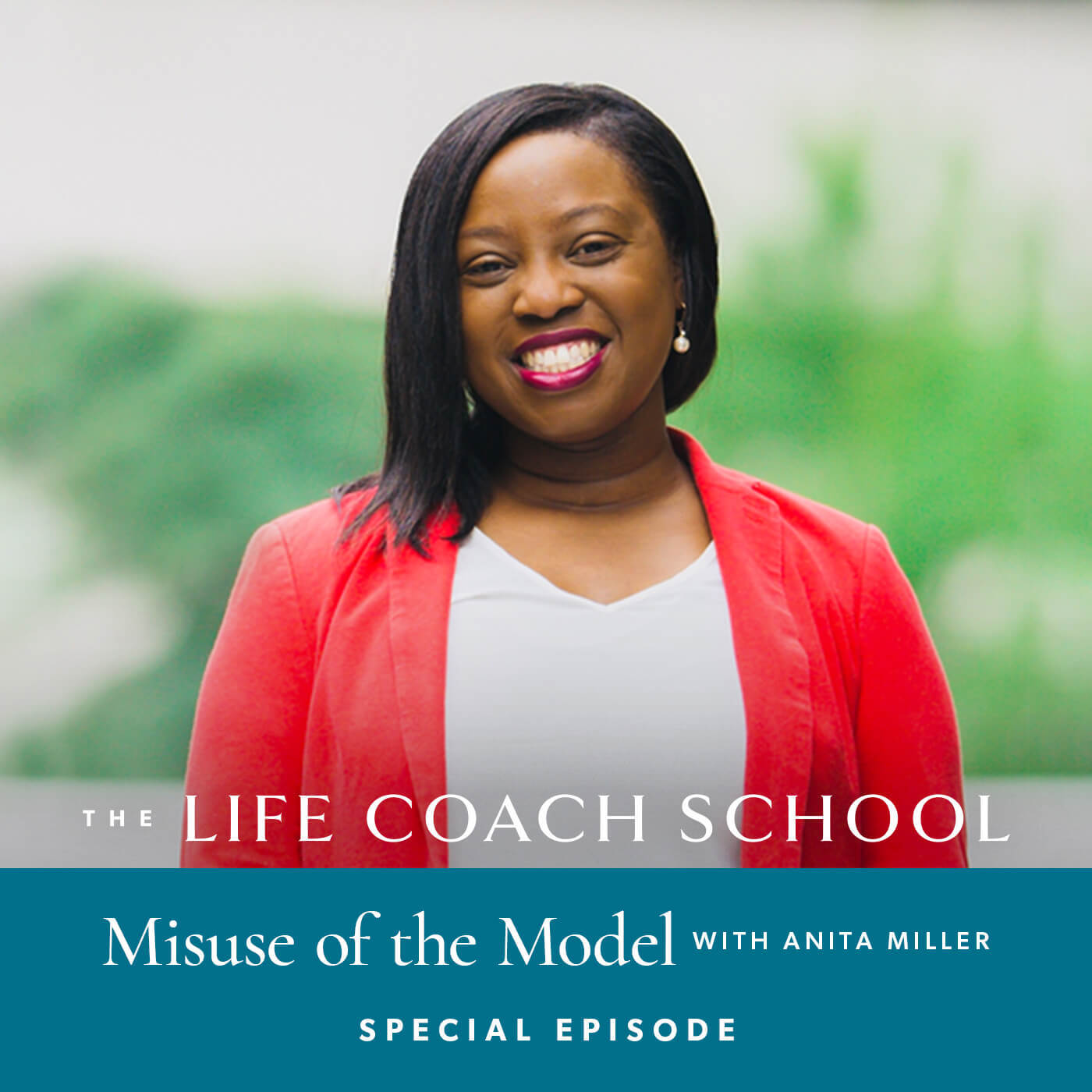 Misuse of the Model with Anita Miller (Special Episode)