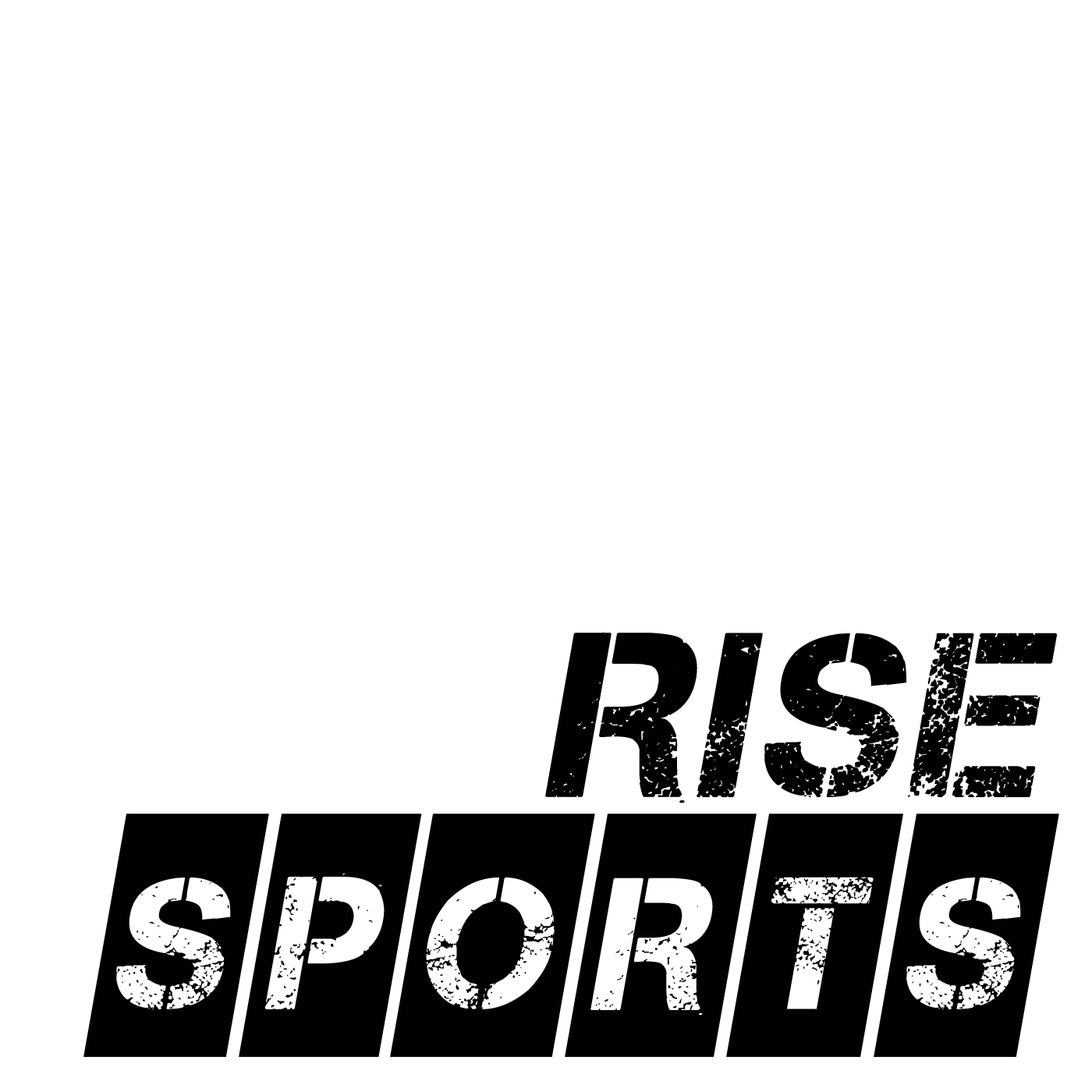 Rise Sports show art
